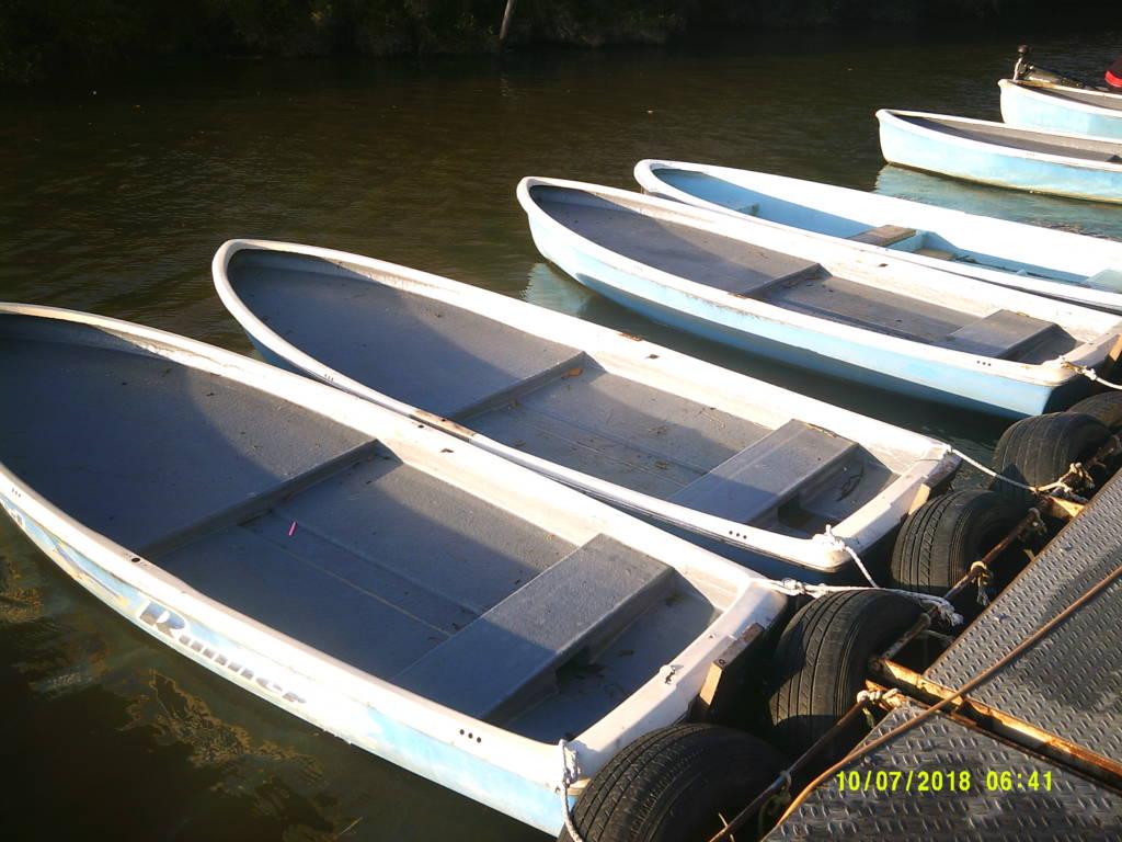 桟橋に並べられたボート