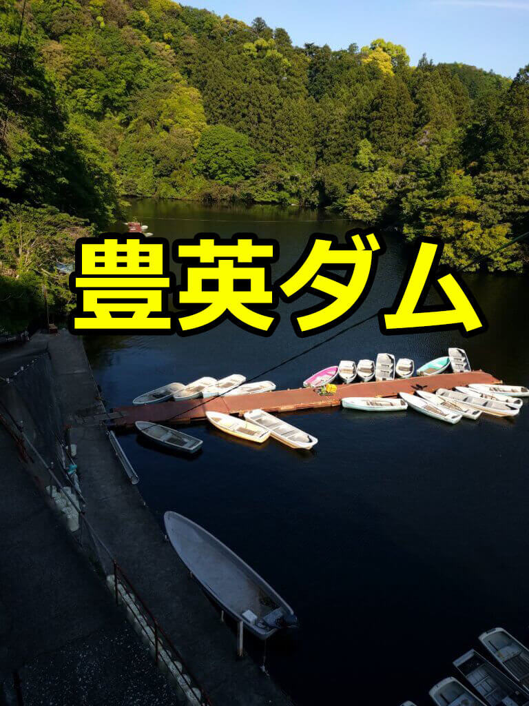 豊英ダムレンタルボート