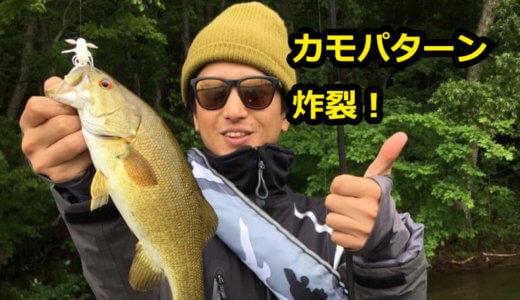 2019年桧原湖バス釣り釣行は「こたかもり」から!カモパターンに救われた!