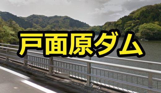 【1店舗】戸面原ダムのレンタルボート店は1つだけ!免許不要艇はありません!【バス釣り】