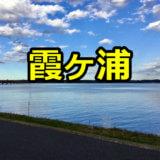 霞ヶ浦のレンタルボート
