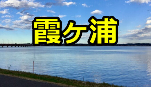 【5店舗】霞ヶ浦のレンタルボートまとめ!料金や営業時間を事前に確認して予約しよう!【バス釣り】