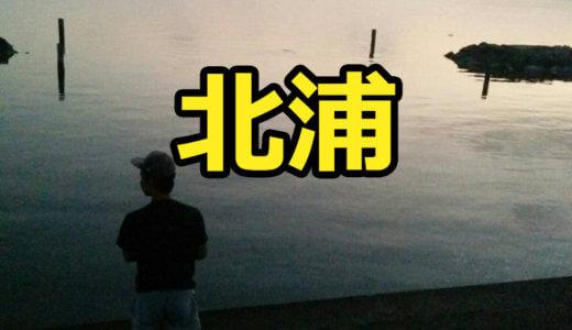 【2店舗】北浦のレンタルボート店まとめ!手漕ぎボート・バスボートの有無も含めて調べてみた【バス釣り】