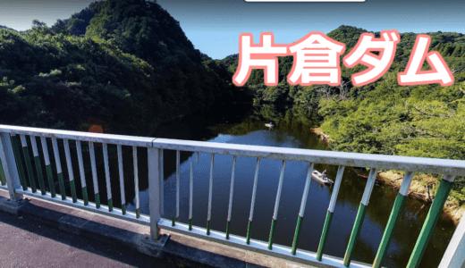 【3店舗】片倉ダム笹川湖のレンタルボート店まとめ!免許不要艇あり【バス釣り】