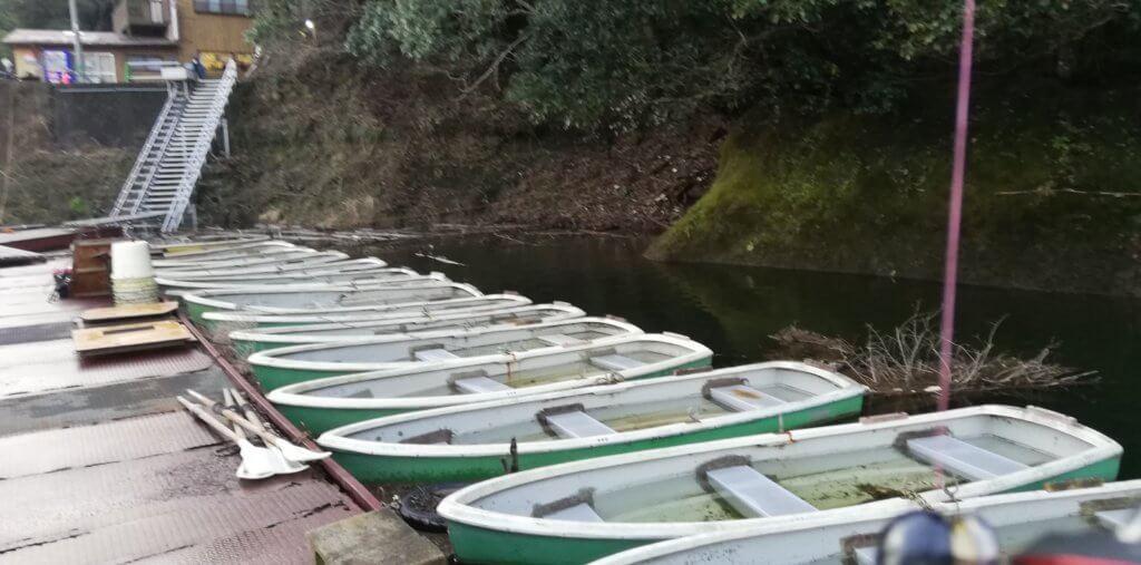 釣れた場所