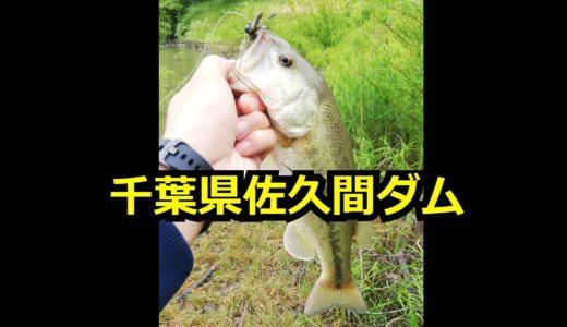 【バス釣り釣果】千葉県佐久間ダムは癒しの湖!短い時間でしたがなんとか1本