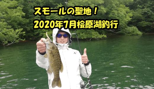 2020年7月の桧原湖釣行!外出自粛の影響なのか2019年より釣れてる!