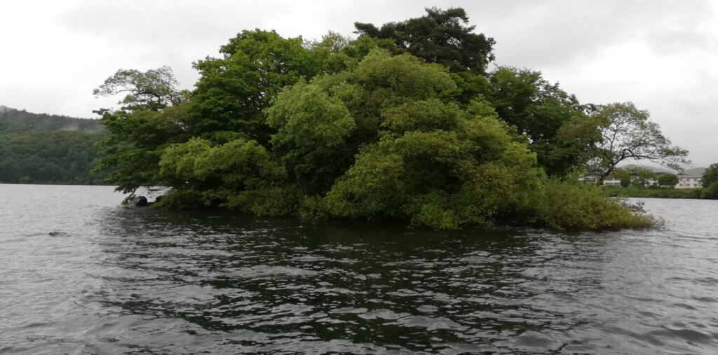 桧原湖南側の浮島