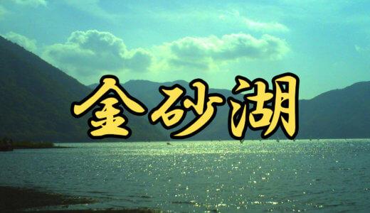 【1店舗】金砂湖(愛媛県)ブラックバス釣りレンタルボート店まとめ 免許不要艇ありだが特殊なレンタル方法