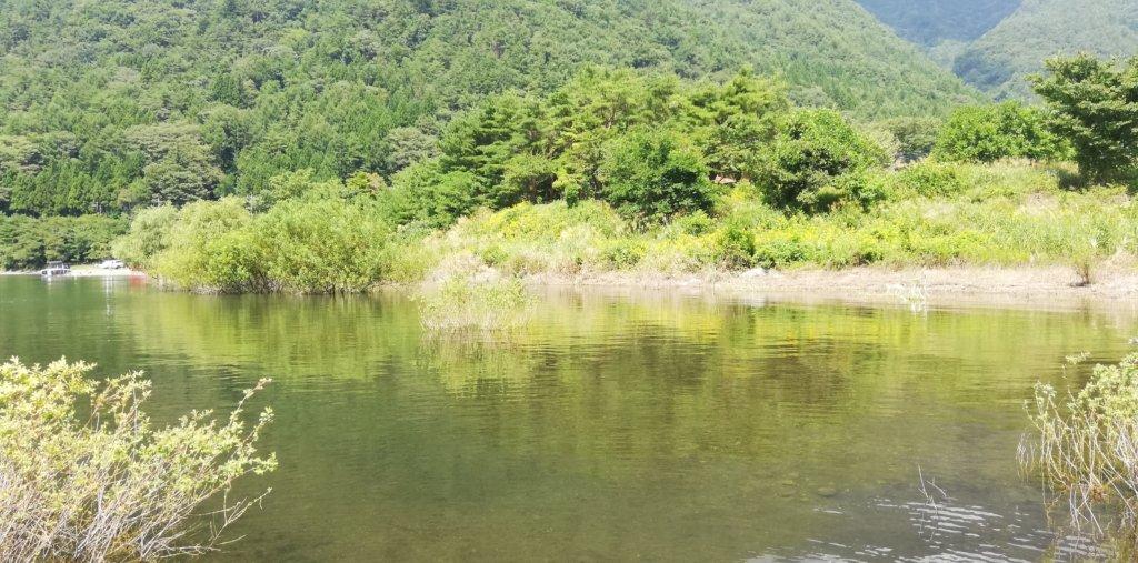 西湖ボート乗り場の横