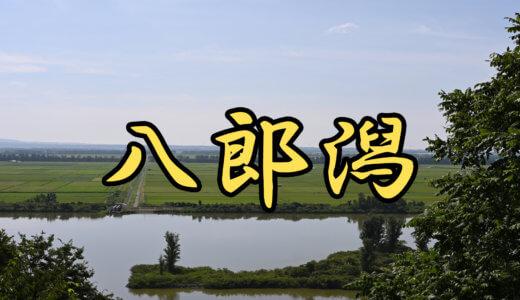 【3店舗】八郎潟(秋田県)ブラックバス釣りレンタルボート店まとめ 免許不要艇あり【バス釣り】