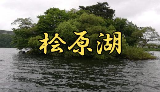 【6店舗】桧原湖(福島県)ブラックバス釣りレンタルボート店まとめ 免許不要艇あり