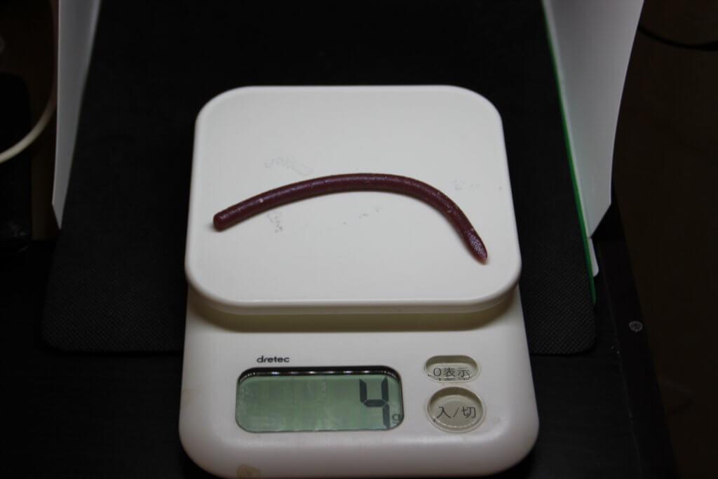 レインズスワンプの重さは4g