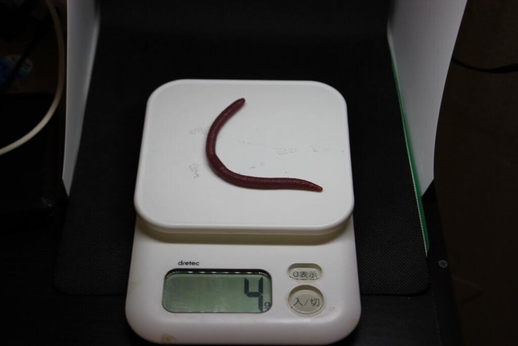 フリックシェイクの重さは4g