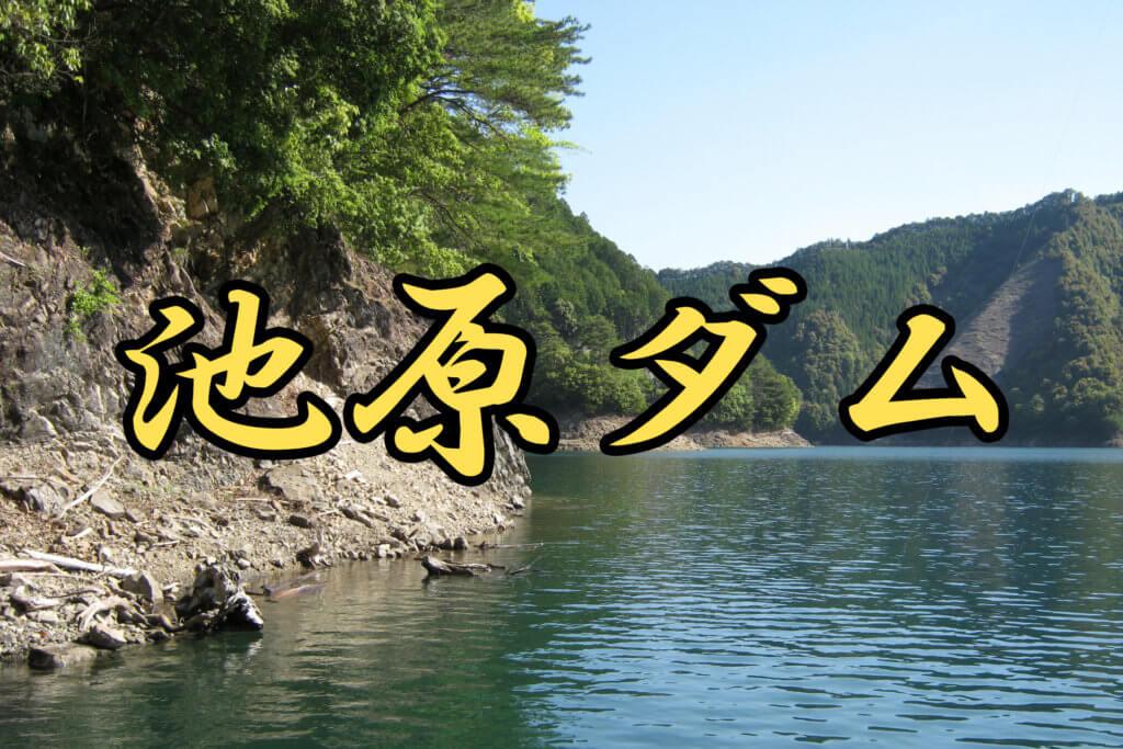 池原ダムのレンタルボート