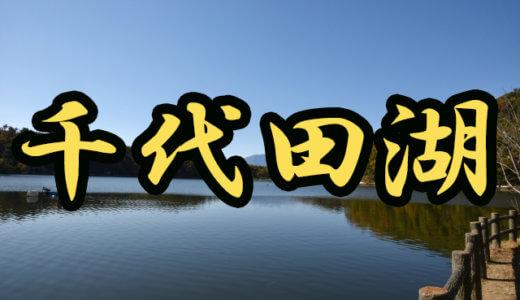 【4店舗】千代田湖(山梨県)のレンタルボート店まとめ ローボートのみ!【バス釣り】