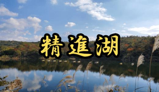 【5店舗】精進湖(山梨県)のレンタルボート店まとめ!免許不要艇はありません!【バス釣り】