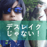 津久井湖釣行
